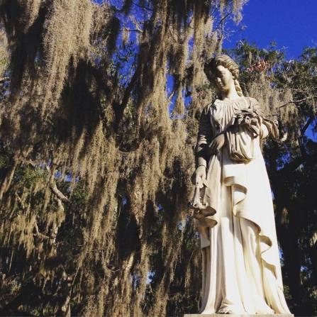 Savannah-Bonaventure